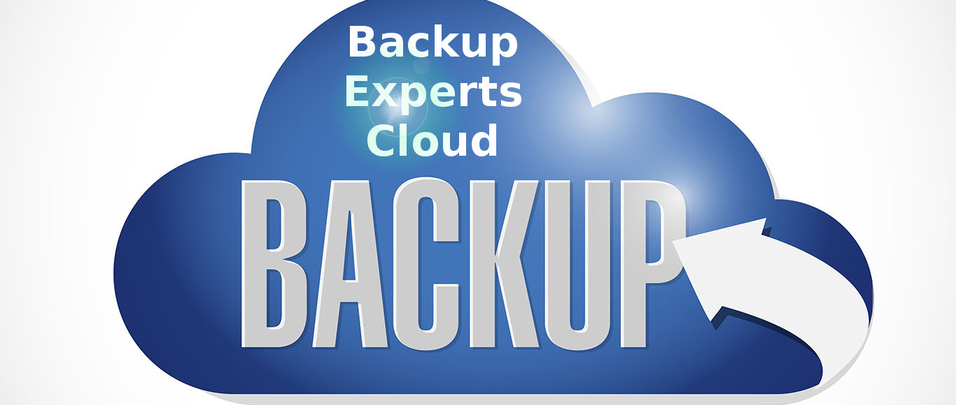 Invest in backup experts backup plan